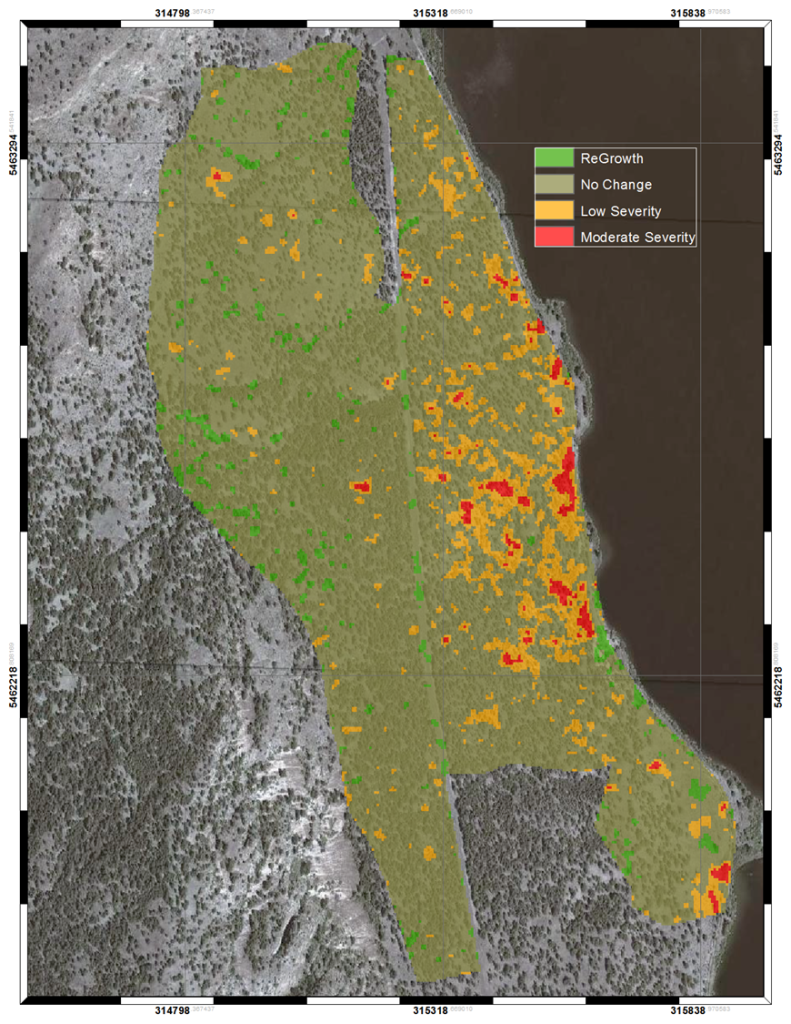 RapidEye satellite imagery helps map forest attributes after a low-severity fire in the southern Okanagan. Photo: BlackBridge. All rights reserved.