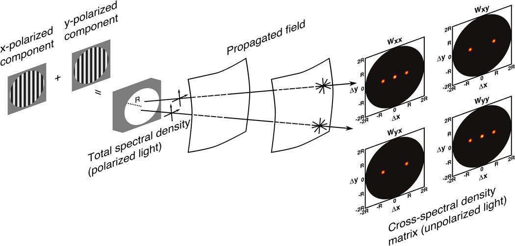 Figure 2. Diagram of a source designed using the generalized van Cittert-Zernike theorem for the cross-spectral density matrix and the resulting propagated field. Two sets of vertical x- and y-polarized fringes are added to create a quasi-homogeneous source with uniform total spectral density. The field produced by this source propagates, creating a field that is unpolarized in the usual single-point sense but polarized in the two-point sense away from the source. The propagated field is represented by the cross-spectral density matrix on the figure (with components Wxx, Wxy, Wyx, and Wyy). Due to the geometry of the spectral density fringes in this example, vector Δr0 is along the x-direction. The characteristics of this field are useful to perform the measurements required in variable coherence polarimetry for the monostatic determination of the pBRDF. R: Radius of of the circular aperture at source.