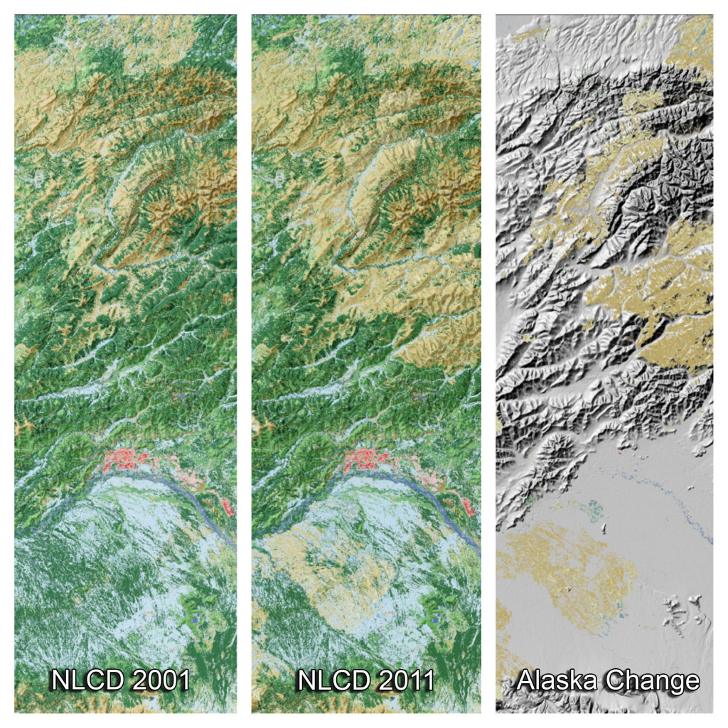 These three panels from the National Land Cover Database depict land cover change in the vicinity of Fairbanks, AK, from 2001 to 2011. The left panel shows the status of the land cover in 2001 (forests in green, shrublands in brown, wetlands in blue and urban in red) The middle panel shows the updated land cover in 2011 and the right panel shows areas where change occurred over this 10 years. This change was caused by a wildfire which converted large areas of forests to shrub and grasslands (shades of light brown in the right panel). Approximately one million acres burn across Alaska each year.