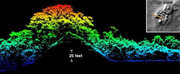 A cross-section through the western mounds of Cahal Pichik at the Maya site of Caracol in Belize (with a corresponding two-dimensional LiDAR image) shows how the LiDAR system can detect both forest canopy structure and the underlying terrain.