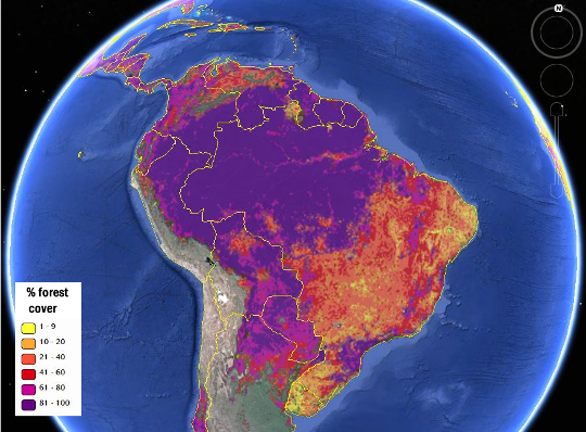 A second version of the map was calibrated using regional and country-level forest statistics from the Food and Agriculture Organization, making it more useful for economic modeling. Image Credit: IIASA Geo-Wiki, Google Earth