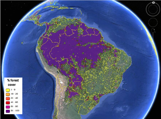 A view of South America's forest cover from the new hybrid global forest map, viewed via the Geo-Wiki platform. Image Credit: IIASA, Geo-Wiki, Google Earth