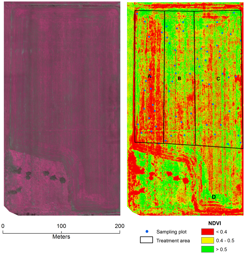 Mosaicked image map based on UAV images of a soybean field in Sturgeon Falls, ON, Canada (79°56′51″E, 46°20′14″N) taken on July 12, 2013.