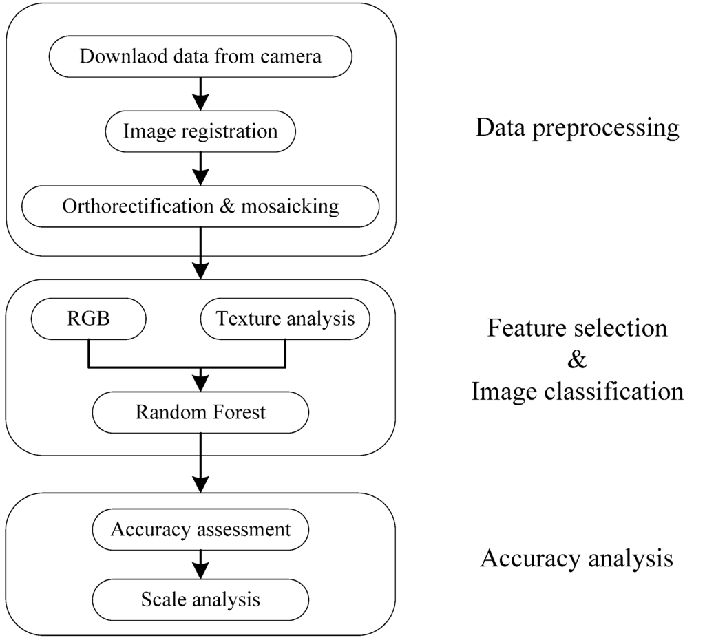 Workflow of urban vegetation mapping using Unmanned Aerial Vehicle (UAV) imagery.