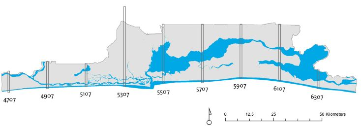 Study Area: Strips of data tiles were selected because the full dataset for the Lagos State area was too extensive.