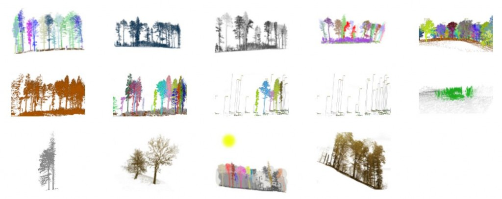 3D forest application data visualization