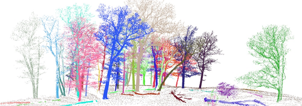 3D Forest – Forest LiDAR Data Processing Tool - GIS Resources