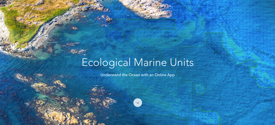 Ecological Marine Units (EMUs) are Esri's gift to a world whose final unexplored terrain lies beneath its seas.Credit: Esri