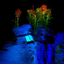 RTL-400 point cloud of Marine Cabin