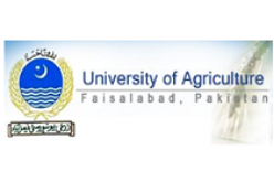 New Degree Courses on GIS & RS at University of Agriculture Faisalabad