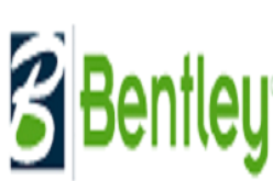 Bentley's New Subsurface Utility Engineering Breakthrough Technology Mitigates Risk of Building in Utility-Congested Underground Environments