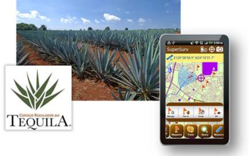 SuperSurv Elevates Tequila Industry Development in Mexico