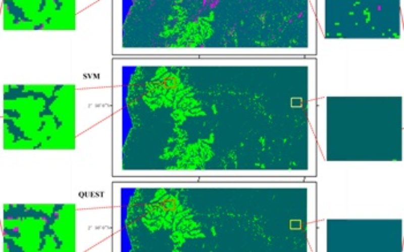 Mapping Oil Palm Plantations in Cameroon Using PALSAR 50-m Orthorectified Mosaic Images