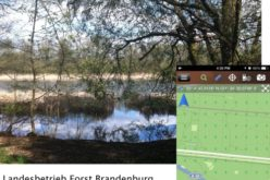 Brandenburg Forest Office, Germany, Select SuperSurv for Forest Conservation