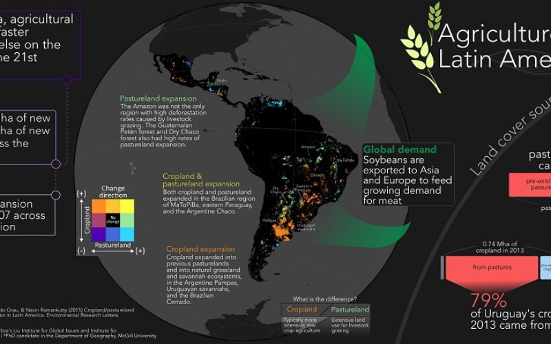 Remote Sensing to Study Dynamics of Cropland in Latin America