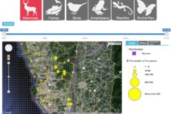 Conserve Biodiversity with GIS – Kaohsiung City Biodiversity Database