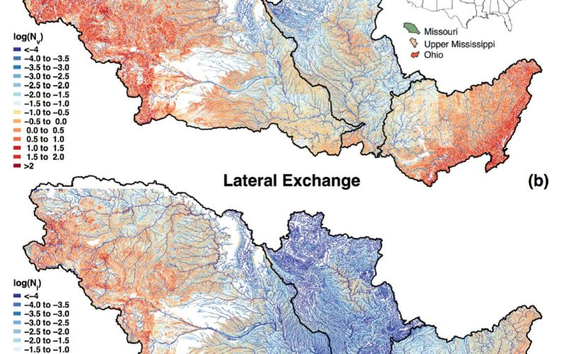 Uncovering the Mighty Mississippi's Natural Potential for Nitrogen Removal