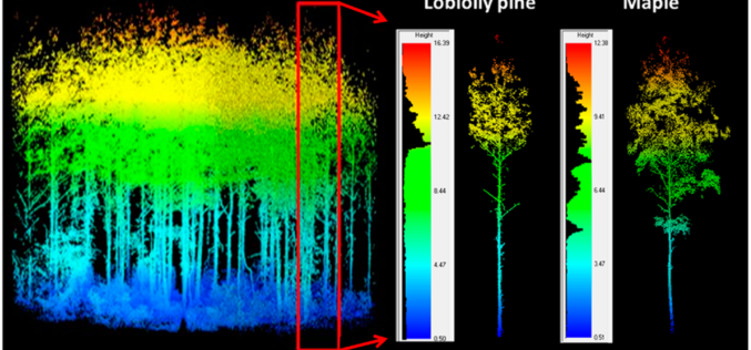 LiDAR Scanning Can Help Identify Structurally Heterogeneous Forest Areas
