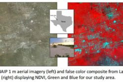Utilizing Patch Metrics to Improve Classification of Remote Sensing Imagery