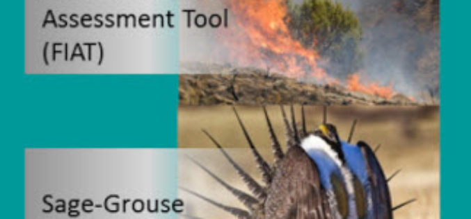 BLM, USGS Publish Data and Visualization Site for Sagebrush Geospatial Data