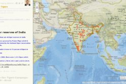 Why should we save Tigers – A Story Map