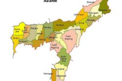 Assam Beings GIS Mapping of Dhubri Town