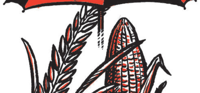 Odisha Government Includes 7 Kharif Crops Under PMFBY Insurance