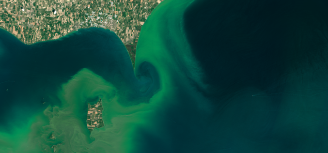 ARSET NASA Webinar: Introduction to Remote Sensing of Harmful Algal Blooms