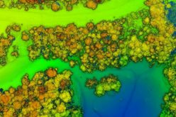 3 Keys to Successful Canopy Penetration Using RedTail LiDAR